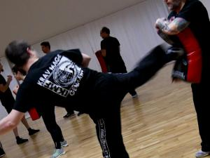 Kicks & Kick Defenses Seminar, 18.11.2017